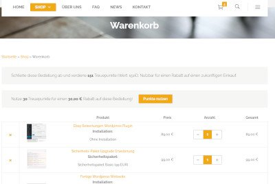 Treuepunkte Onlineshop Webdesigner